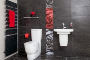 140218-Doug-Bathrooms-6136-300x200